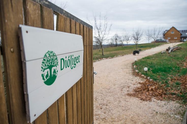 dioliget-409